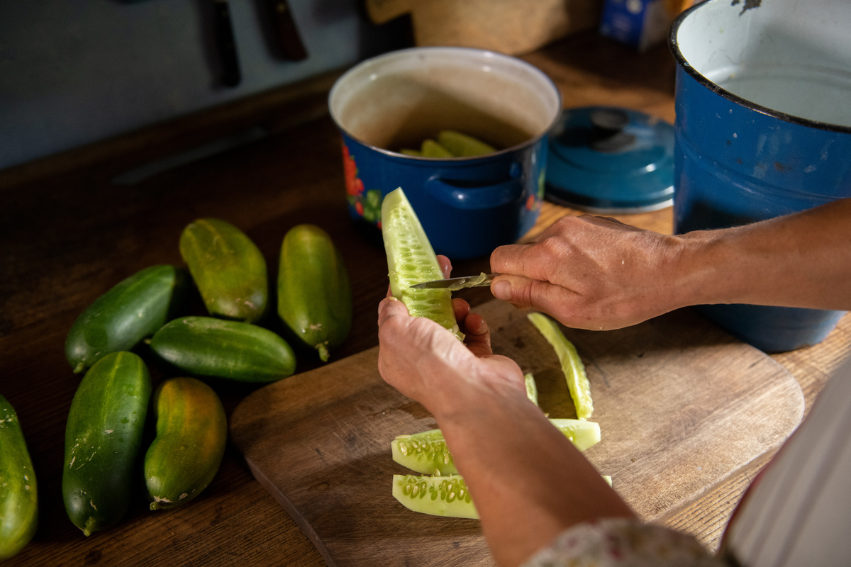 Schimmel peels cucumbers in the kitchen of the farm pumpkins and cucumbers same food family fruits or vegetables