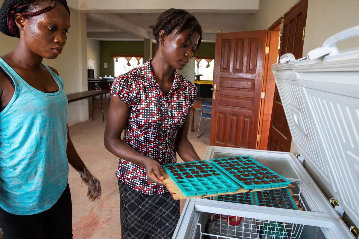 Gifty Barlea and Sunday Seaway store the trays in a freezer at the Liberian International Christian College School of Agriculture