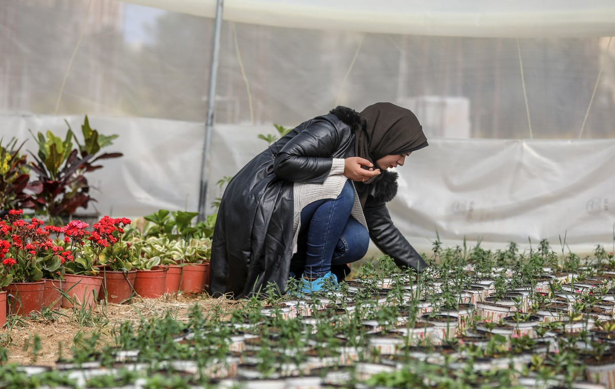 Palestinian woman starts to grow plants goal setting habit formation easy life changing tips