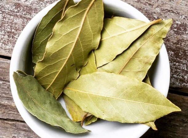 dried bay leaves health benefits settle upset stomachs ease respiratory problems remove toxins from body