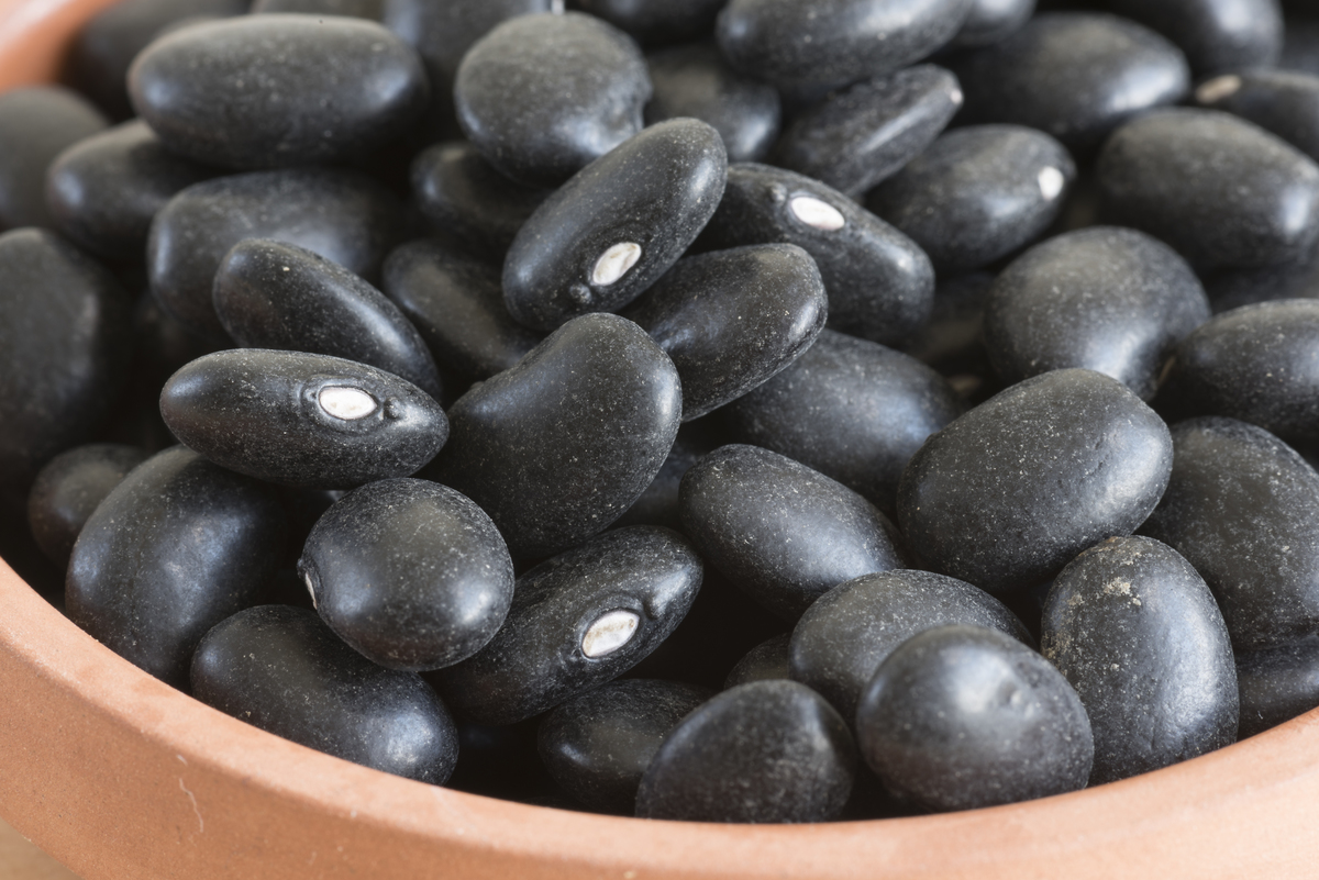 Raw turtle black beans or Phaseolus vulgaris in small clay plate.