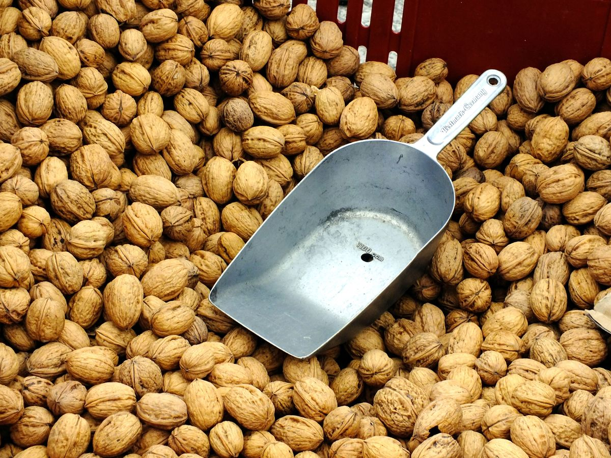 Bulk walnuts with scoop