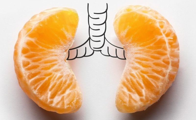 Oranges placed in the place of lungs in a drawing