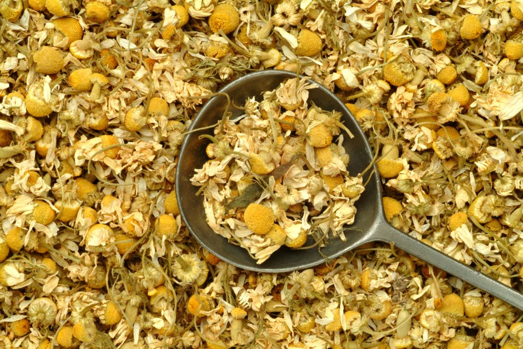 GettyImages-849817750 Medicinal Plant and Tea. Dried Blossoms Of Medicinal Plant. Matricaria Chamomilla (synonym: Matricaria Recutita). Chamomile