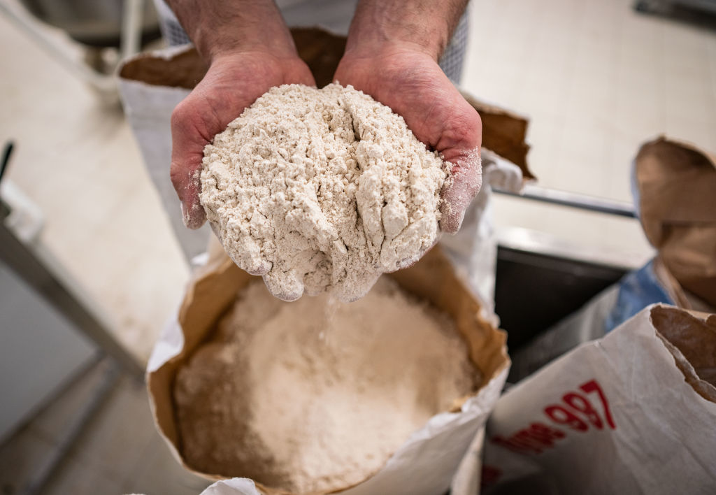 A baker hold flour is his hands up to the camera.