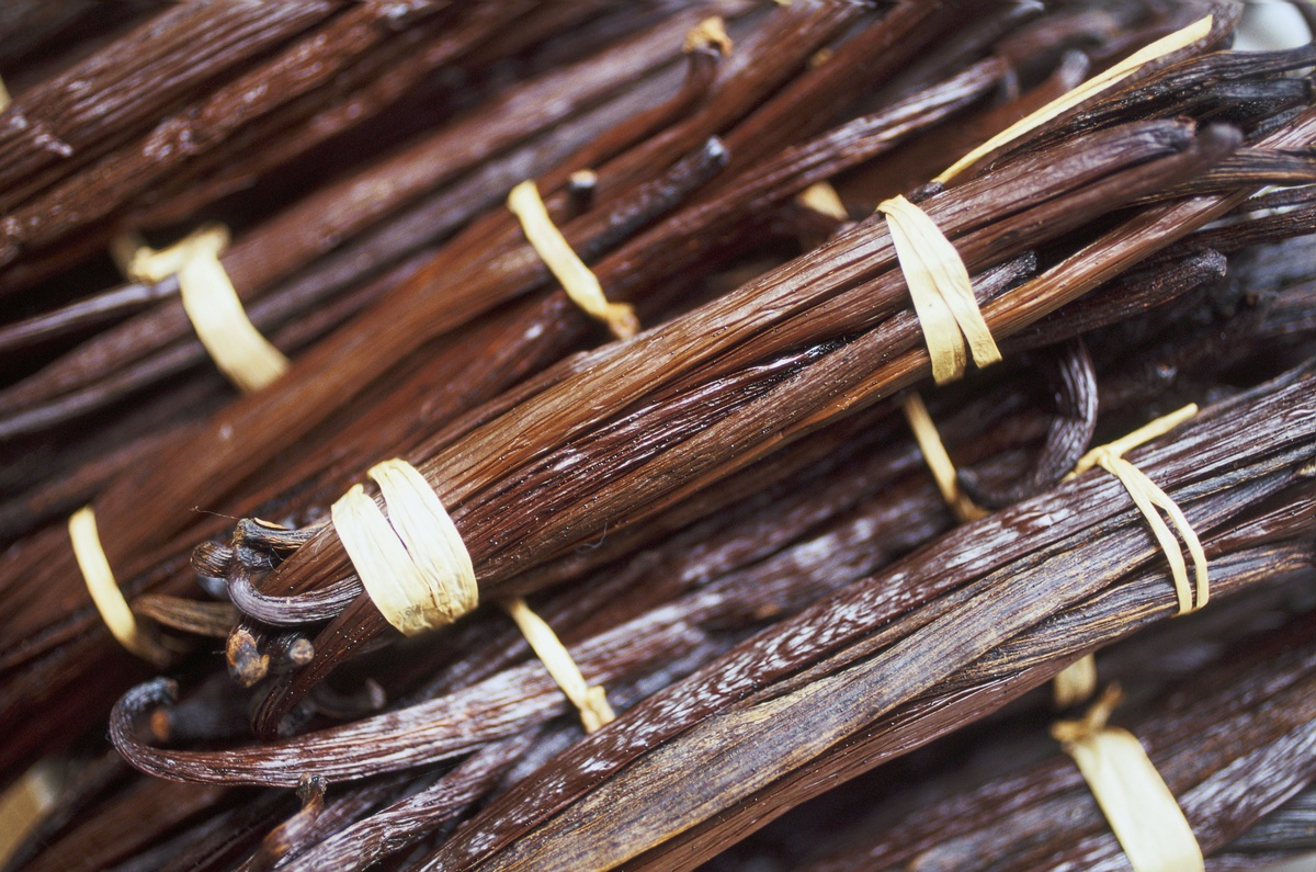 Vanilla pods in Madagascar.