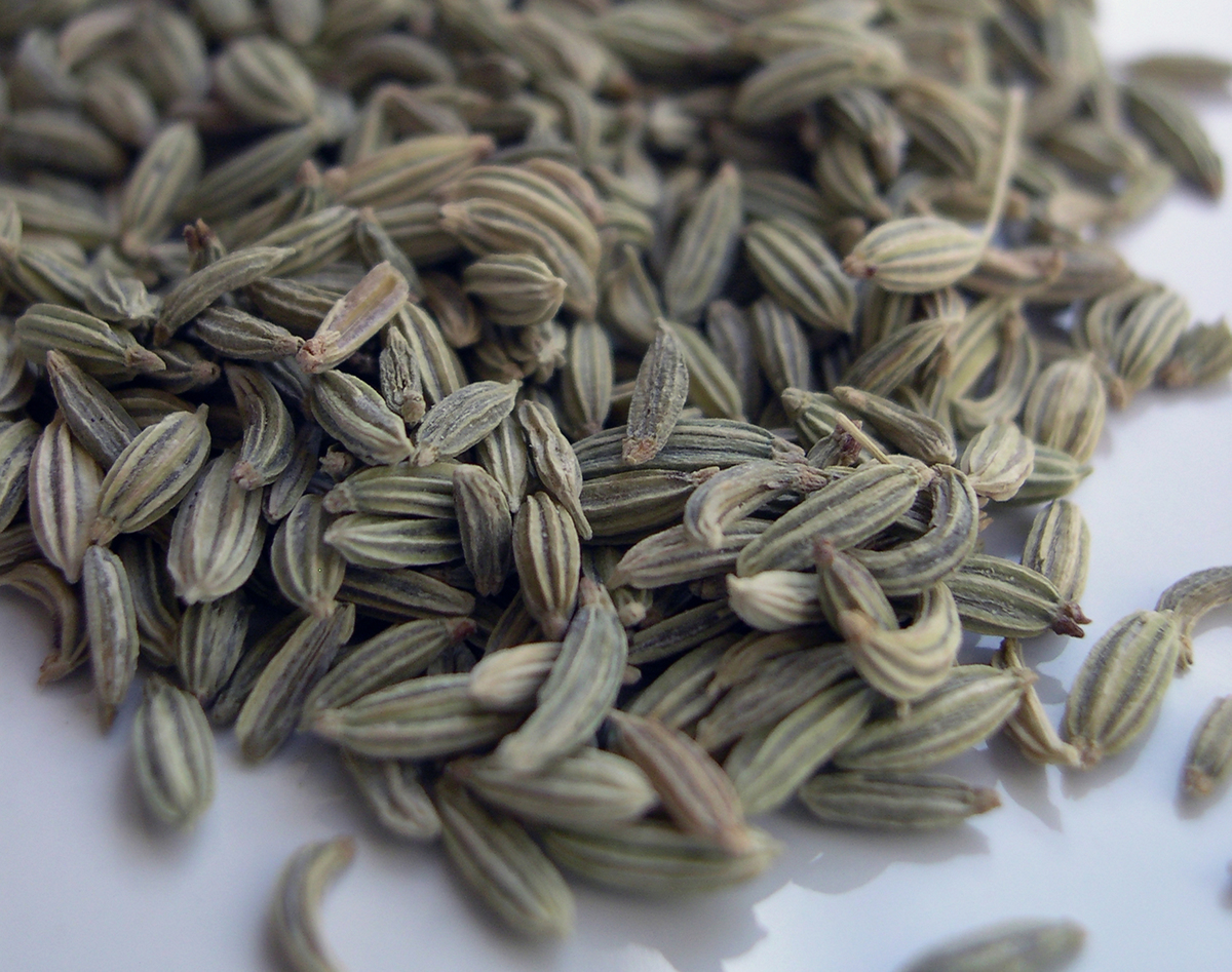 Pile of fennel seeds