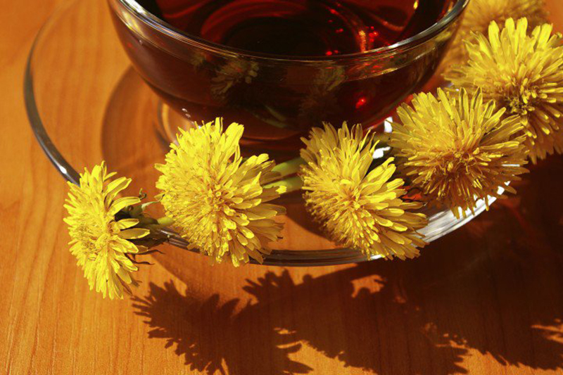 Dandelion flowers next to dandelion tea