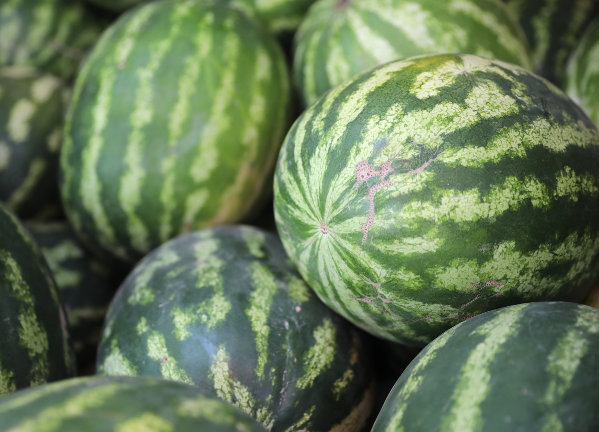 melons need to be washed before consumption