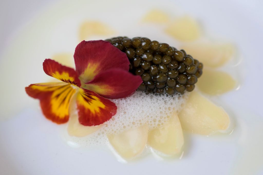 A small serving of caviar is decorated with a flower
