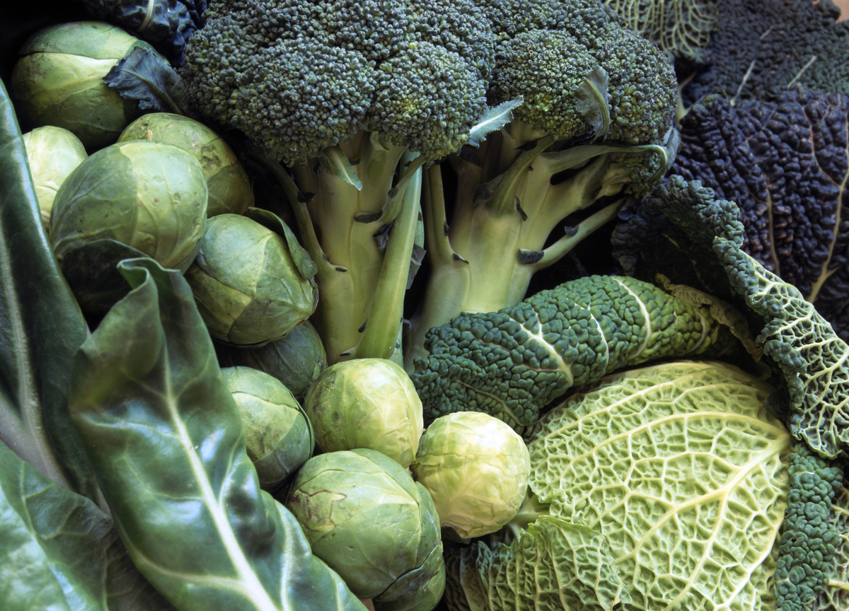 Green vegetables - savoy cabbage, brussel sprouts, broccoli, swiss chard.