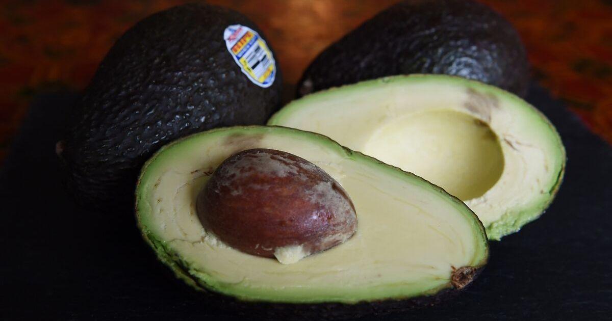 A hass avocado sliced open