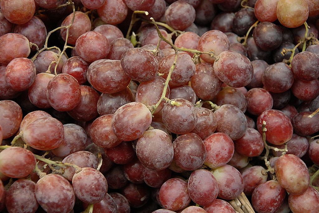 close-up of red grapes