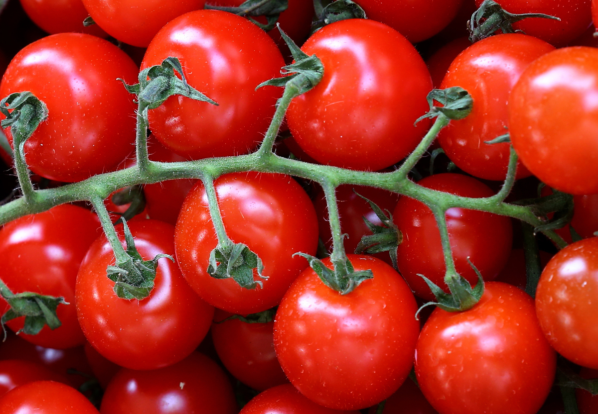 keeping-tomatoes-fresh-hack