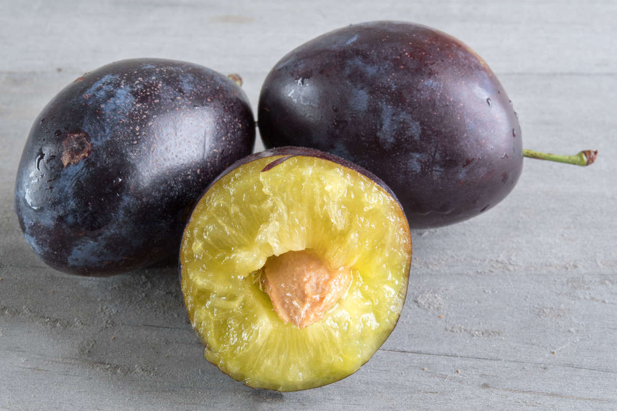 A blue Ontario plum is cut in half.