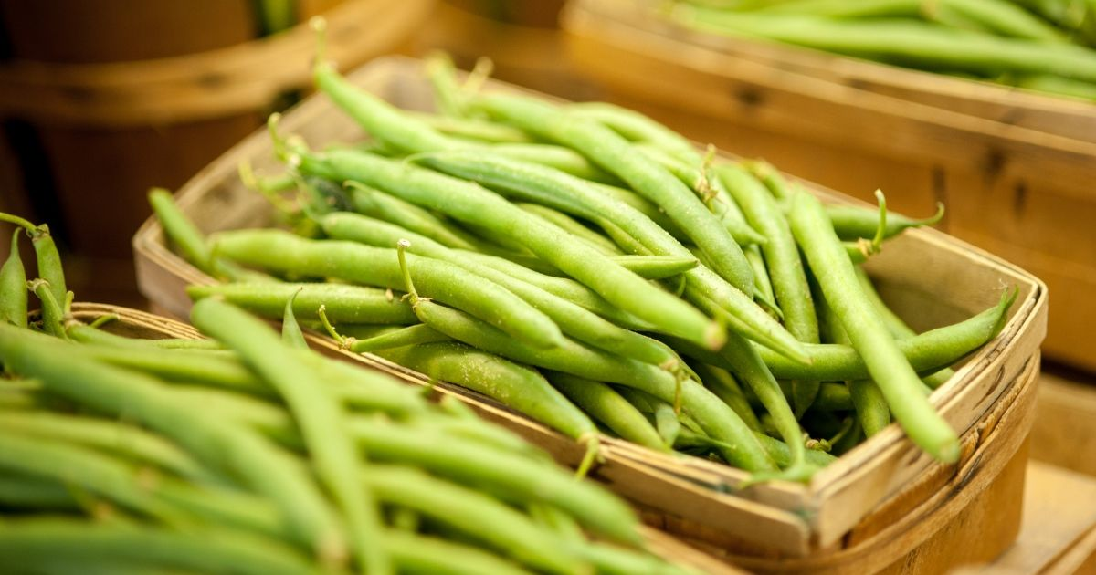 Fresh green beans in wicker containers