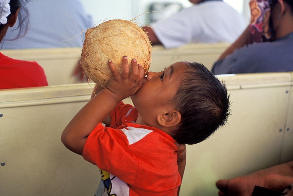 A toddler drinks from a coconut.