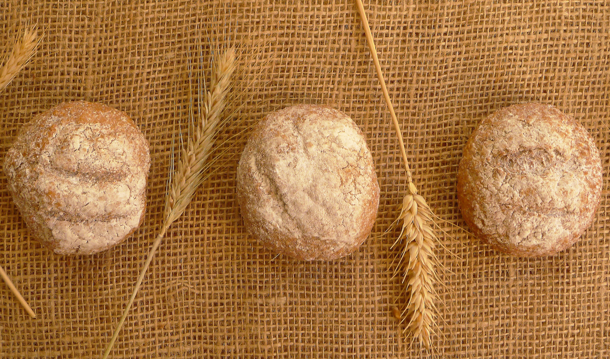 Small loaves of homemade whole wheat bread are aligned on a burlap sack.
