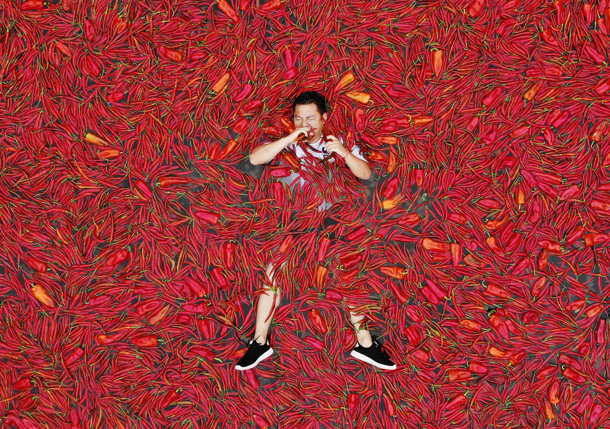 A contestant lies in a chili covered pool eating Chillies during a chili eating contest.