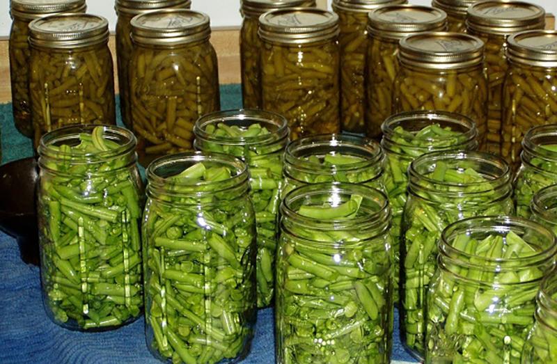 Chopped cucumber soaks in pickle jars.