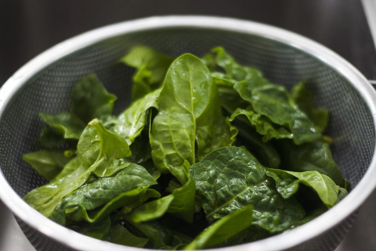 Freshly washed spinach sits in a strainer.