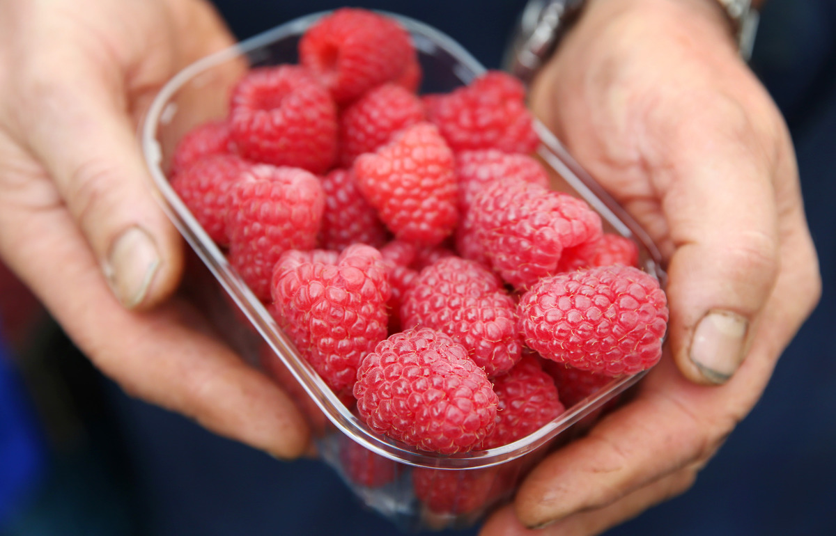 A marketer presents a bowl of raspberries.