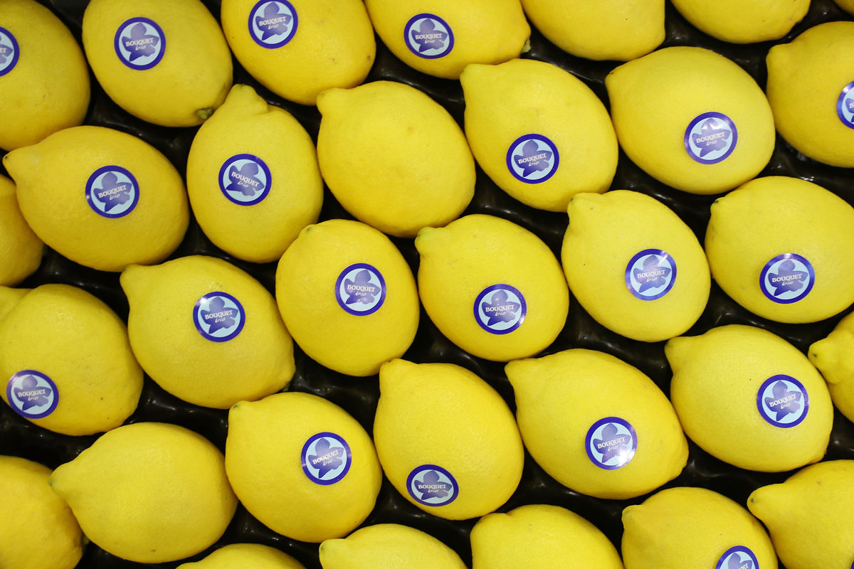 Organic lemons lie on display at a Spanish producer's stand.