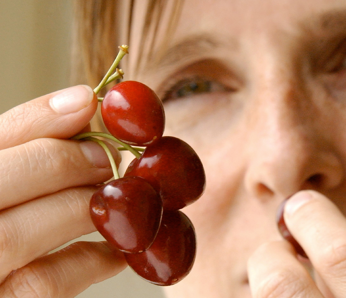 A woman holds and tastes cherries.