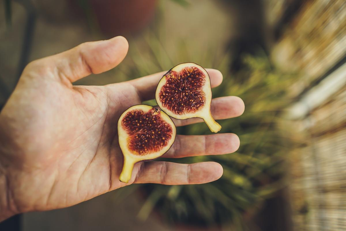 A person holds two halves of a sliced fig.