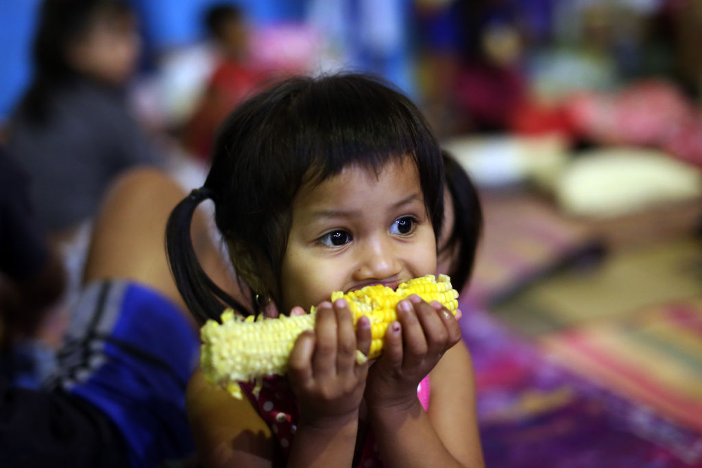 A child eats corn on the cob.