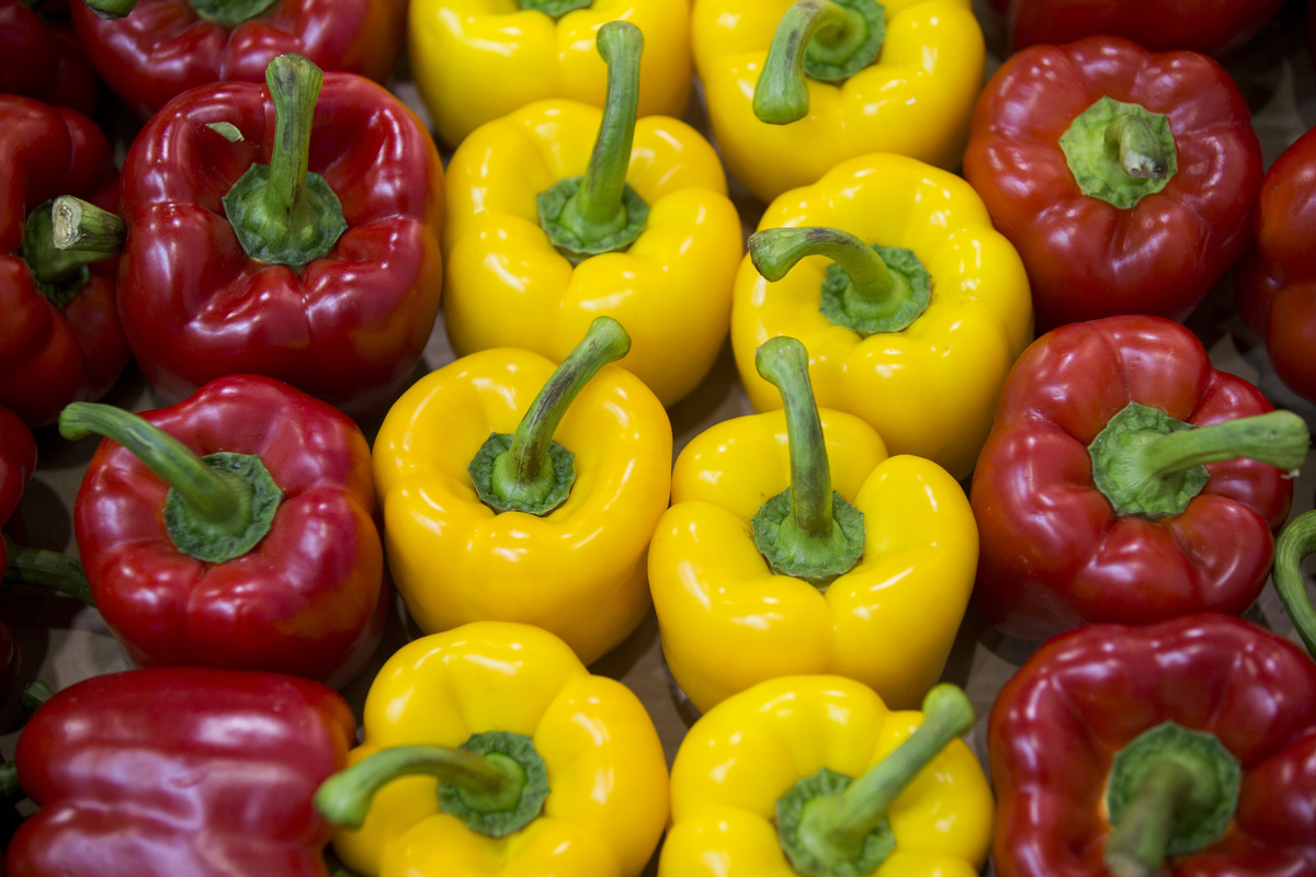 Red and yellow bell peppers stand in a line.