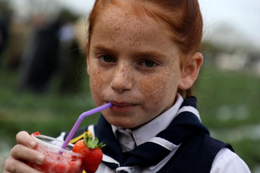 strawberry-1187983260