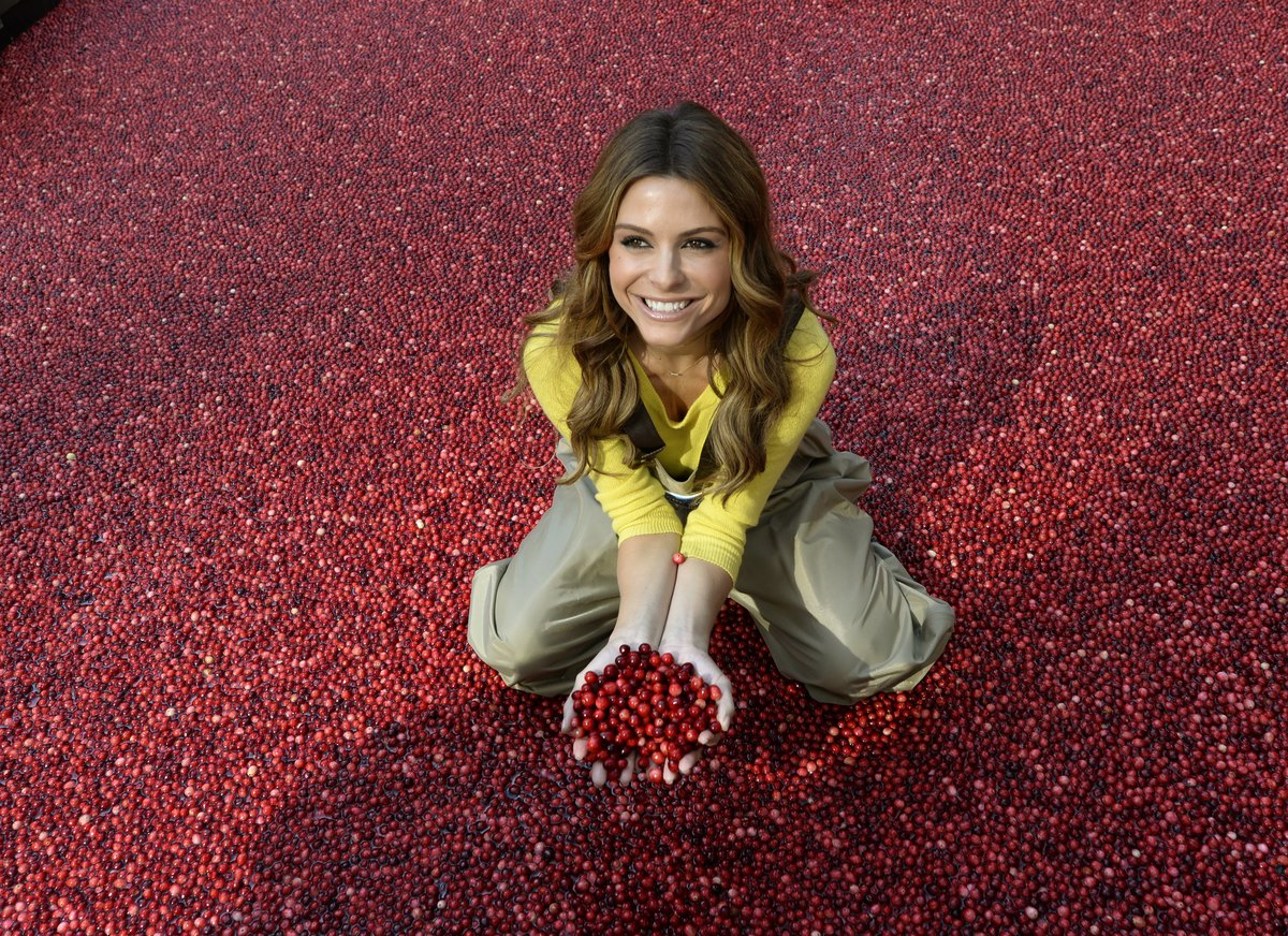 Actress Maria Menounos poses amongst 2,000 pounds of fresh, floating cranberries at Ocean Sprays cranberry bog display.