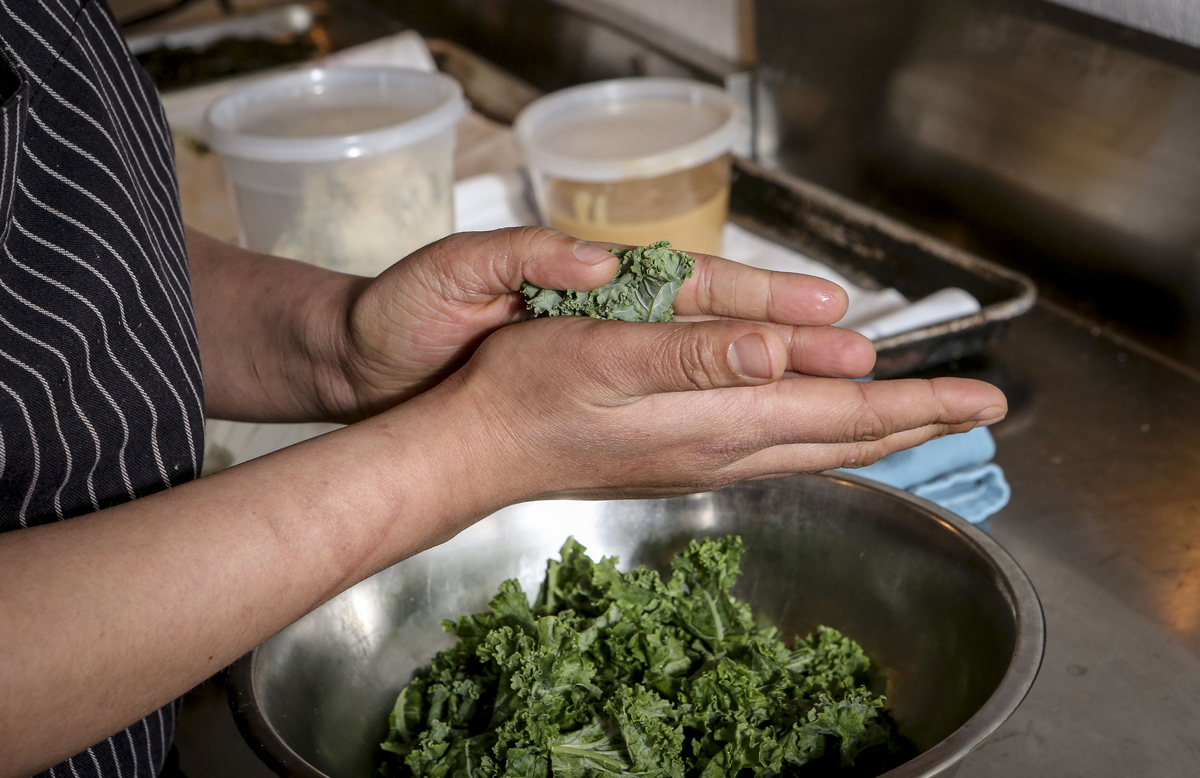 A chef massages kale to soften it for a meal.