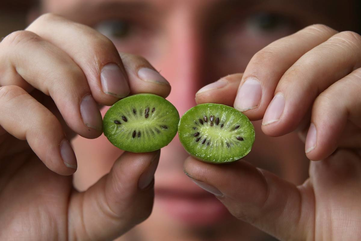 A man holds up two halves of a kiwi.