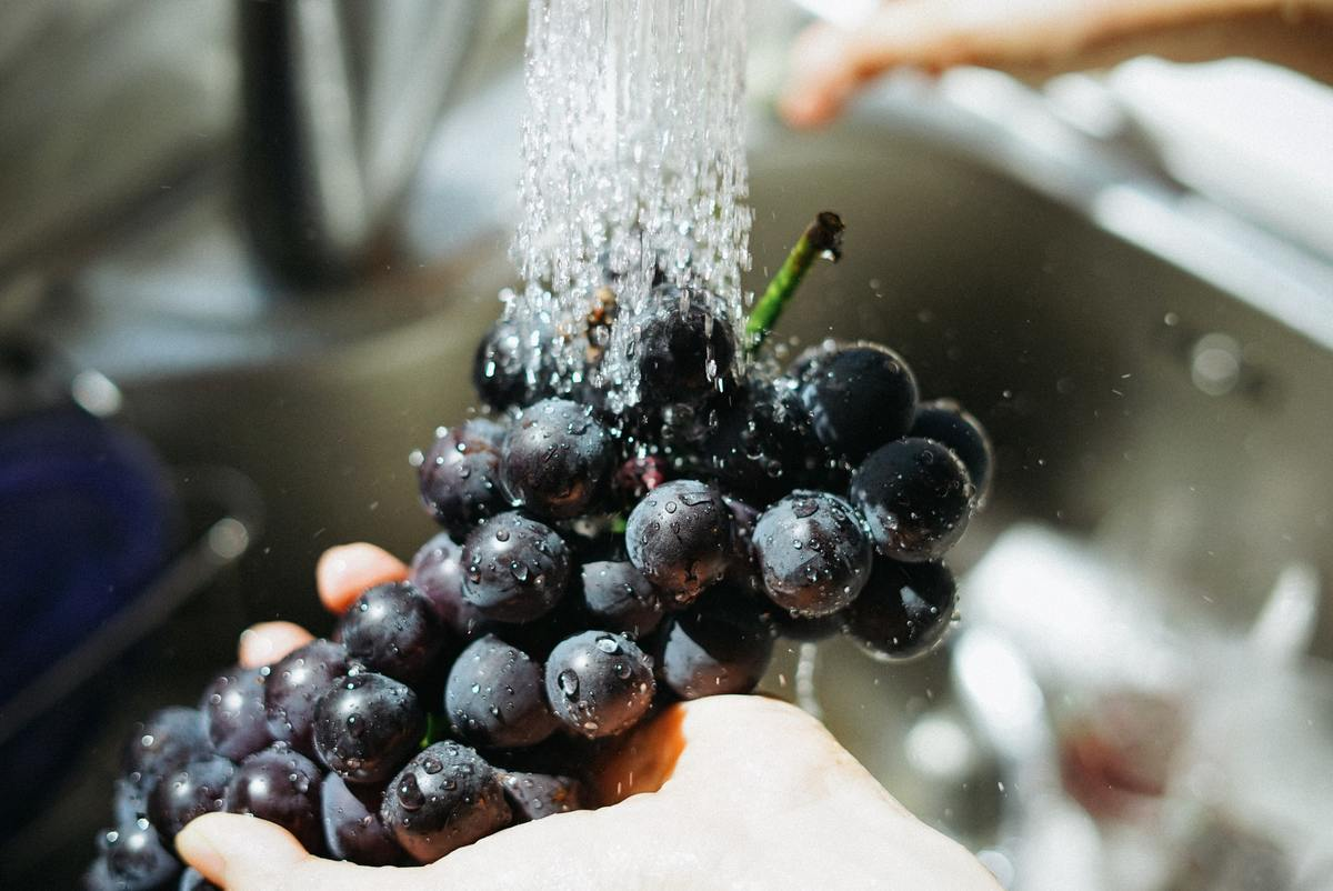 A person washes grapes in a sink.