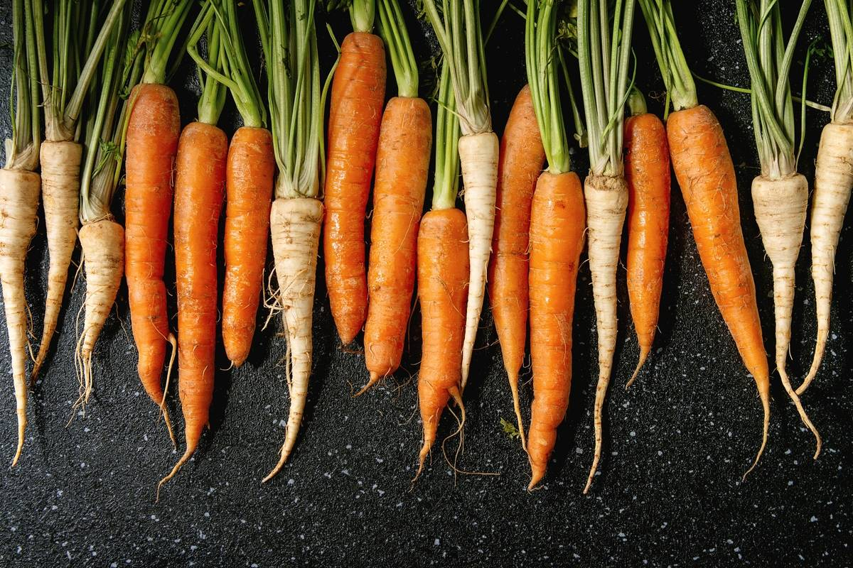 Carrots and parsnips sit in a row over a black texture background.