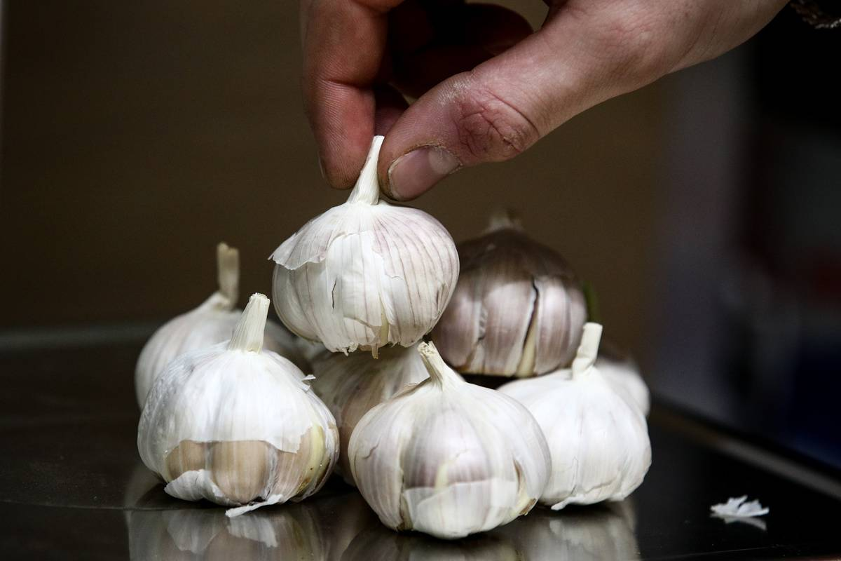 A person stacks garlic bulbs on a scale.