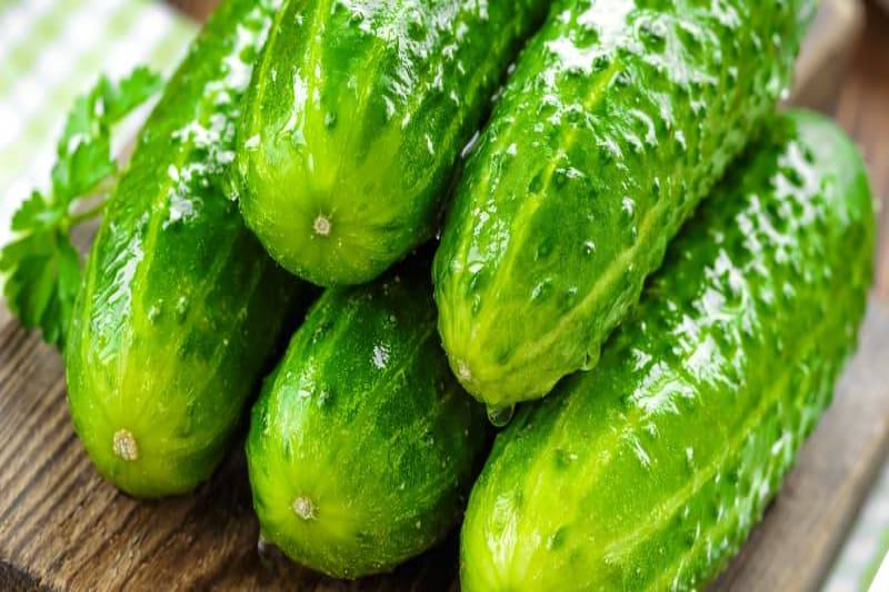 cucumbers-storing