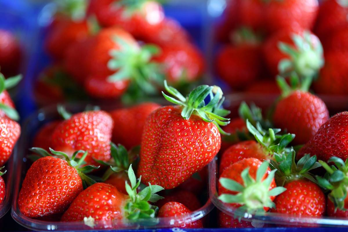 A close-up shows strawberries in a blue container.