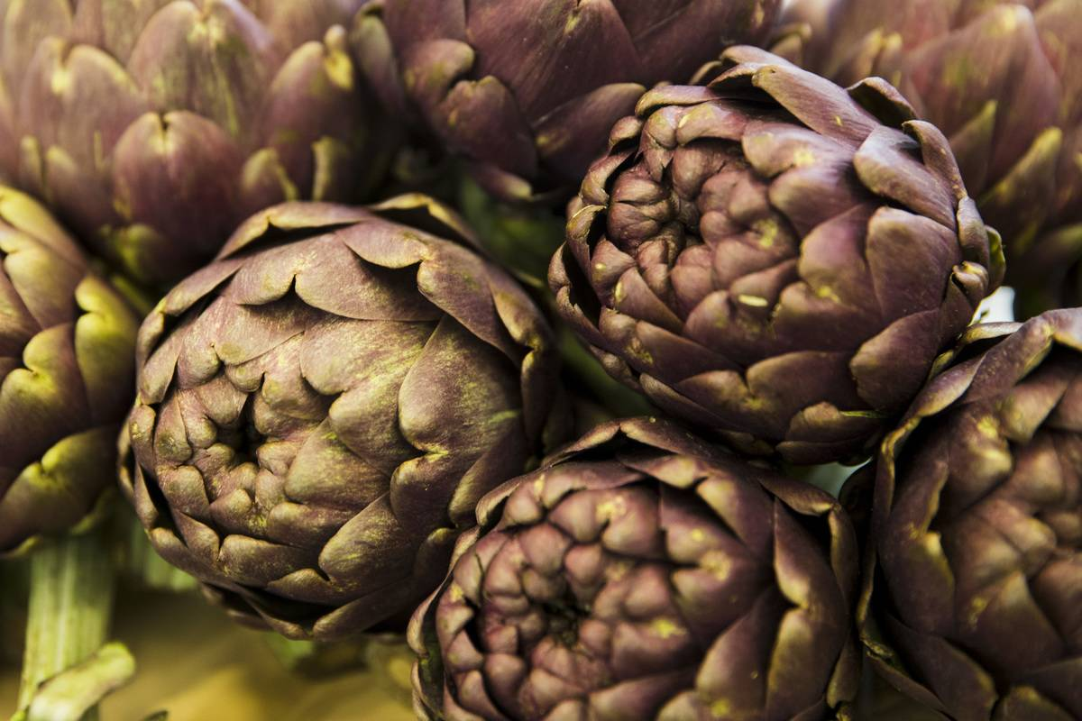 Purple artichokes are piled on top of each other.