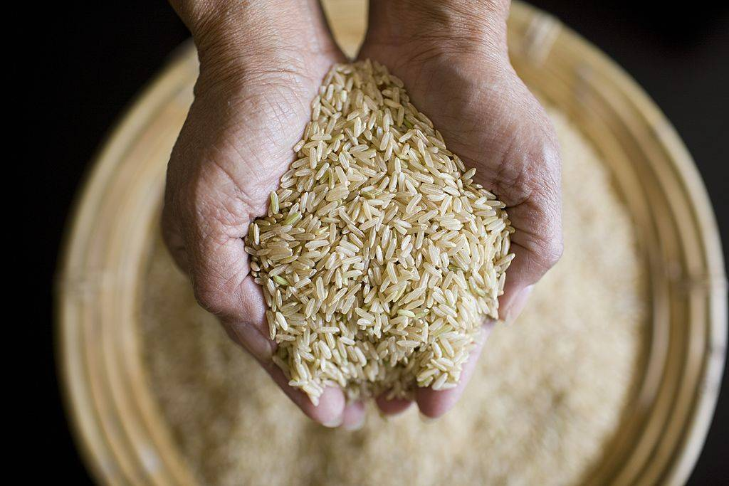 woman holding a handful of wholegrain rice