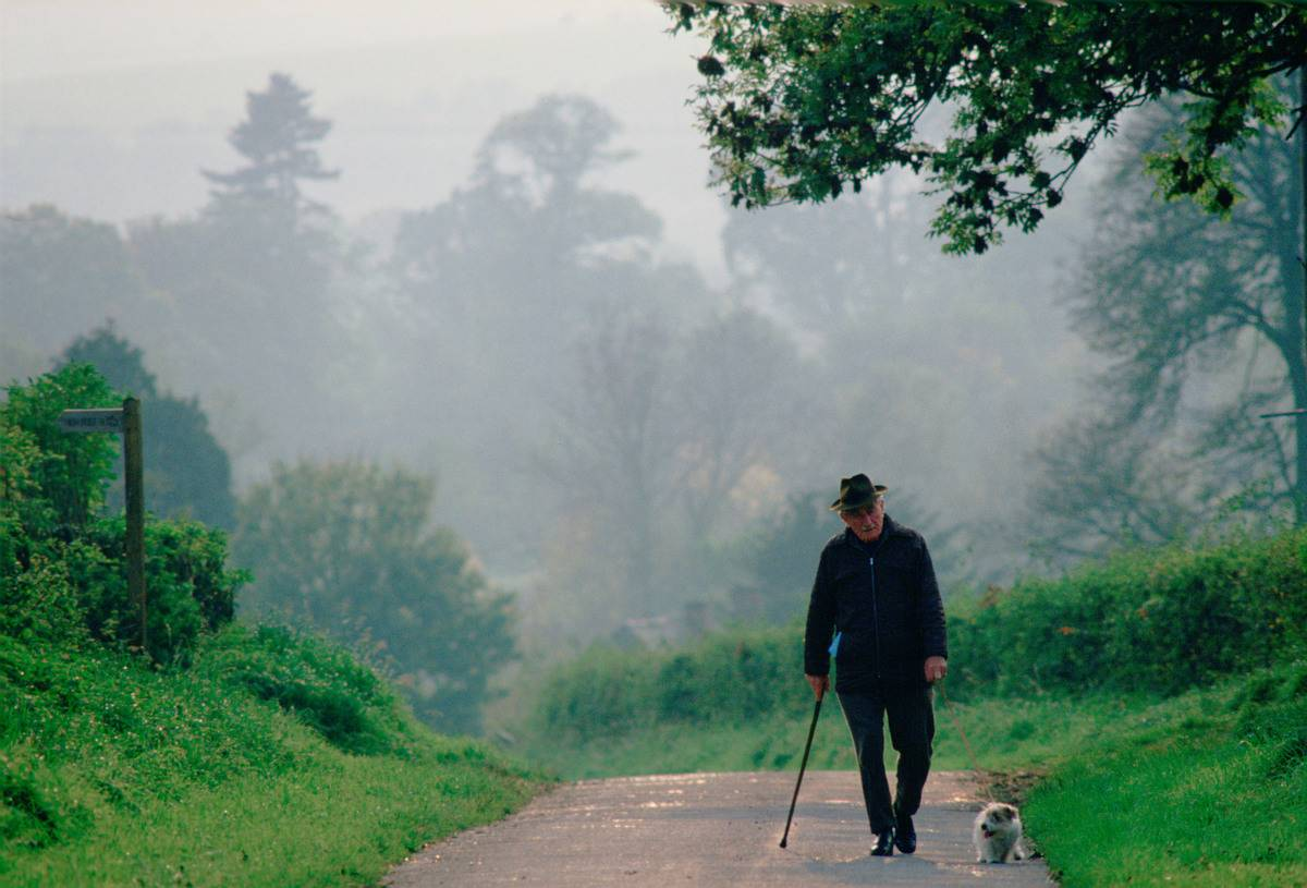 An old man walks his dog alone.