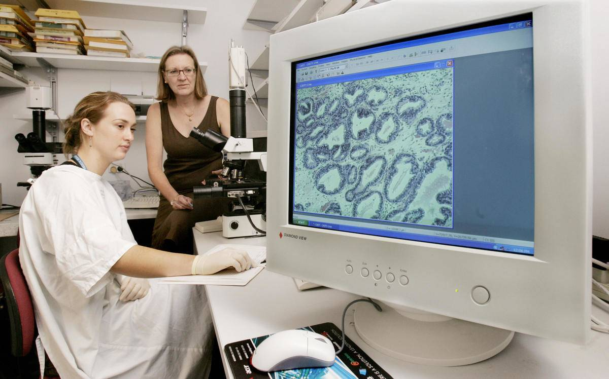 Professors observe cancer cells on a computer screen.
