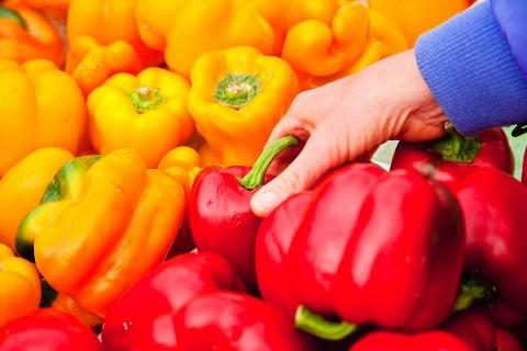 Picking a bell pepper, Farmers Market, Santa Barbara, California