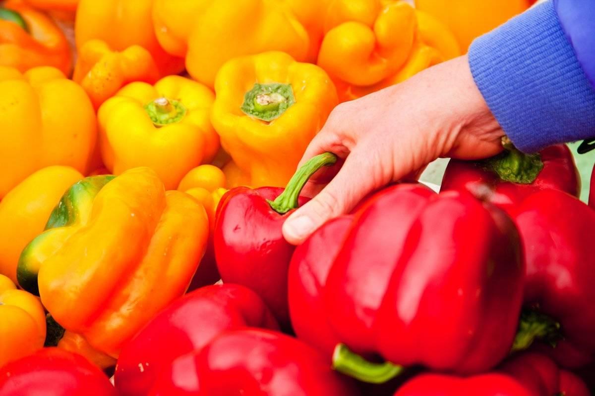Picking a bell pepper, Farmers Market, Santa Barbara, California