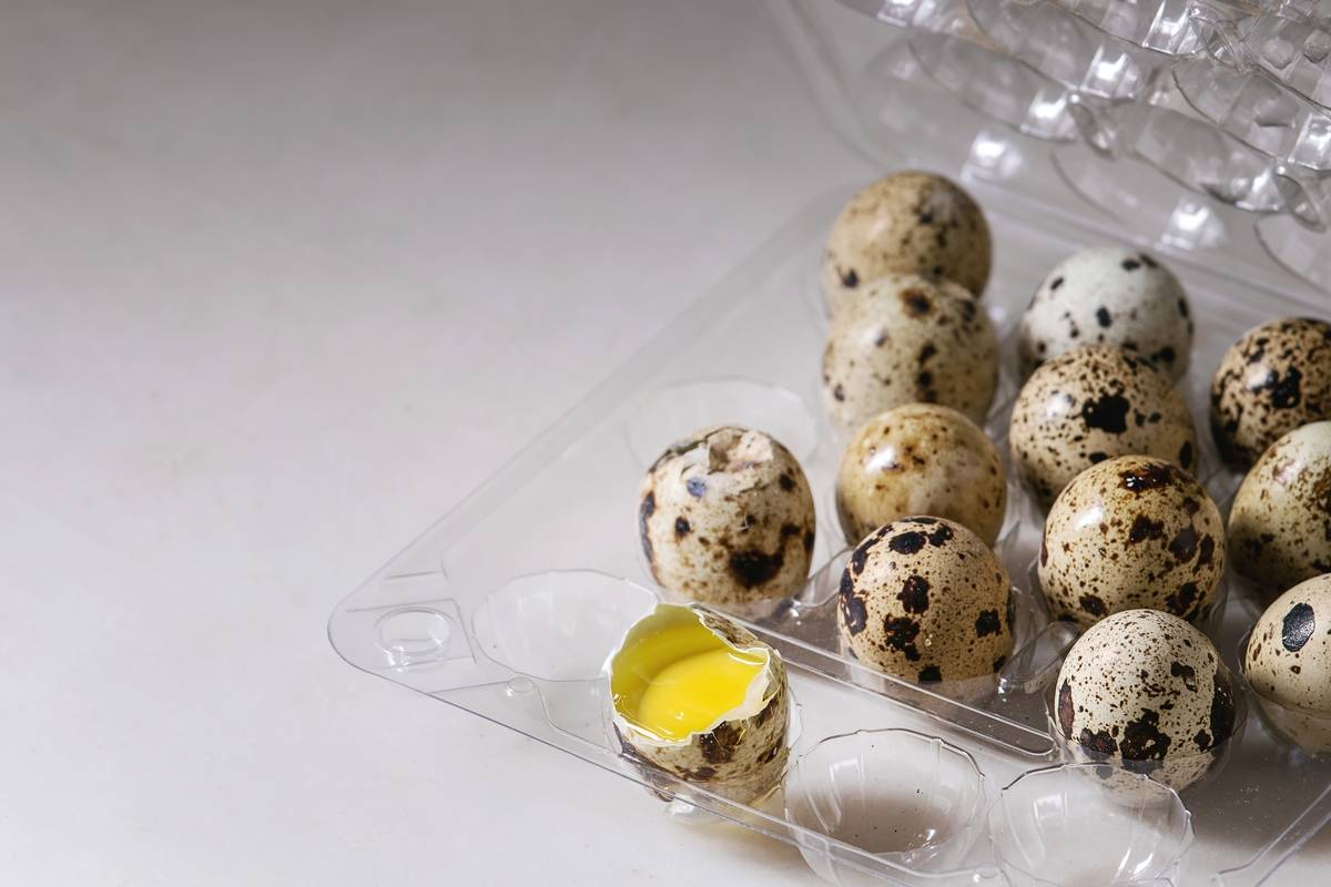 Raw quail eggs are in a plastic container.