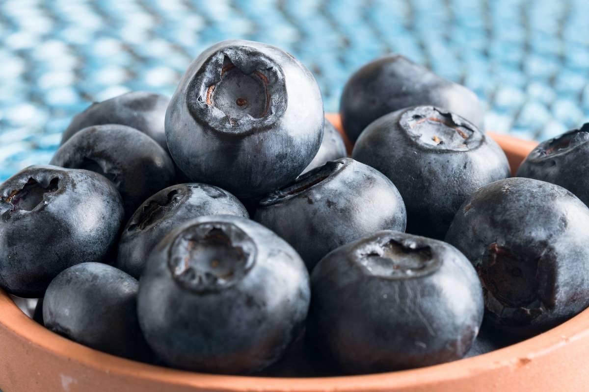 Blueberries Make For The Best Frozen Treat