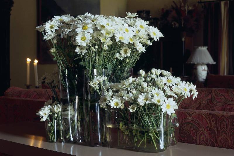 Keep Cut Flowers Fresh Longer