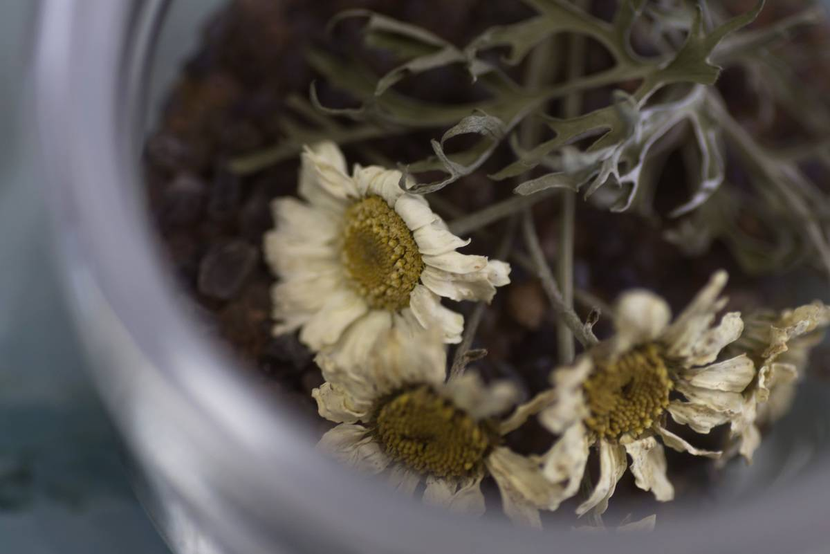 Dried flowers are in a glass jar.